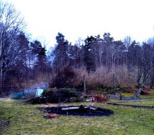 Grenar och skräp har redan samlats in till vårbrasan
